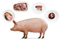 babi-3