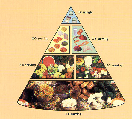 makanan sehat screen