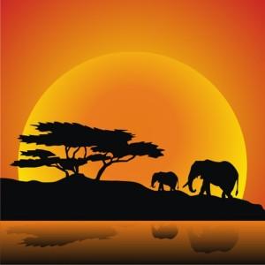 siluet gajah