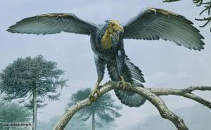 The Archaeopteryx is the earliest known bird ever to have been found. It lived during the Upper Juassic period about 147 million years ago. It had clawed fingers, wings and toothed jaws - part dinosaur, part bird.