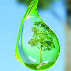 cara-mencegah-pencemaran-air