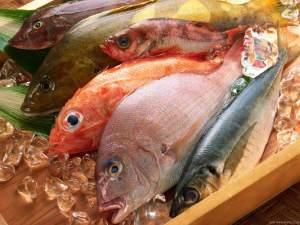 ikan laut segar